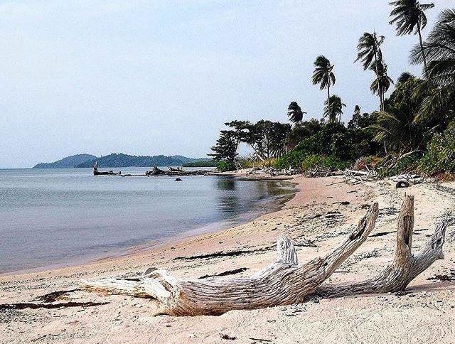 Pulau Cantik di Lingga ini Dihuni Kawanan Ikan Duyung