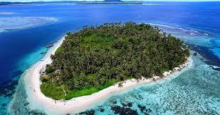 Menilik Surga Penyu Bertelur di Pulau Mangkai Anambas