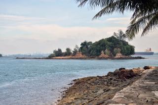 Pulau Biola, Surganya Kepri yang Dipenuhi Bonsai Santigi
