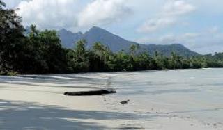 Asyiknya Berjemur di Bawah Pohon Cemara di Pantai Sebagul